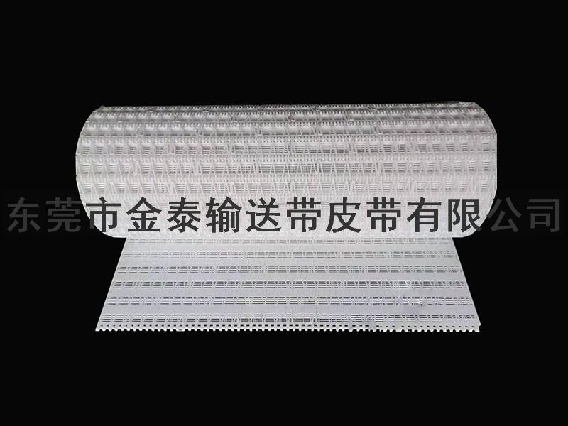 塑胶输送网带